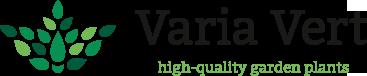 Varia Vert – High-quality garden plants